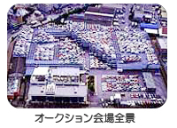 中古車オークション会場